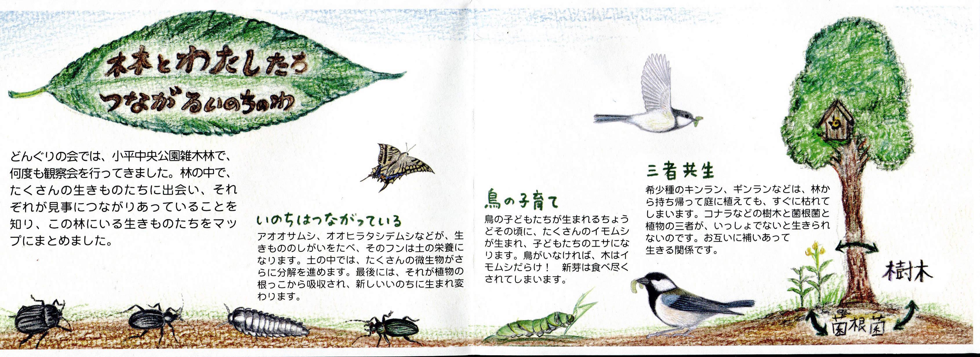 ikimonomap2012_2