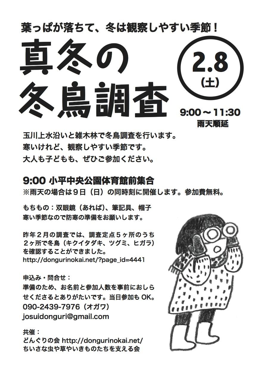 20140208fuyudorichirashi