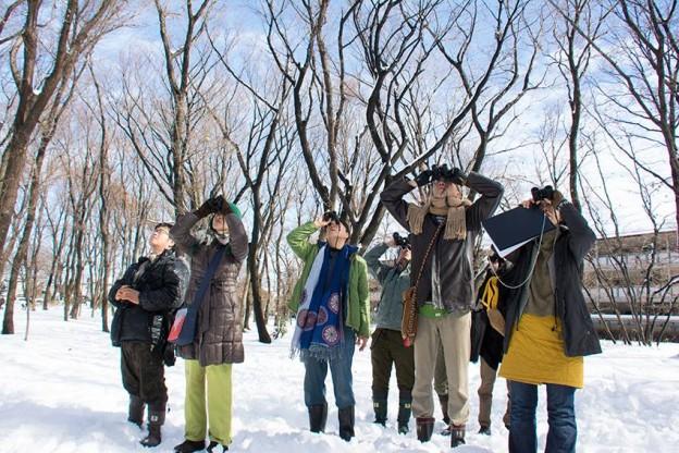 2014月2月9日(日) 「真冬の冬鳥調査」(主催:どんぐりの会)調査定点5ヵ所の内、2ヵ所で冬鳥(ツグミ、ビンズイ、モズ、ジョウビタキ)を確認。初めて調査中に猛禽類2種(オオタカ、ツミ)を確認。(撮影:高野丈)