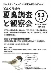 20140503natsudoriiA4_1