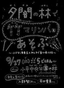 20140927竹マリンバ